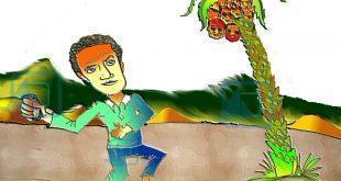 كاريكاتير النافذة : موسم حصاد البلح