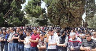 #صورة 35 ألف مصلٍ يؤدون صلاة الجمعة في المسجد الأقصى المبارك رغم تشديدات الاحتلال