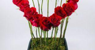 كيف تزرع الحب