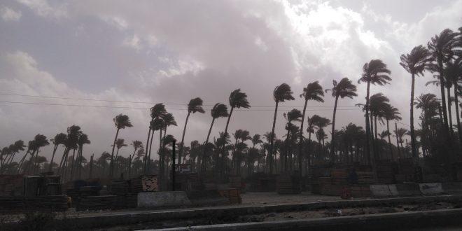 تقلبات_جويه ورياح محملة بالأتربة على مدن محافظة #دمياط ..