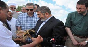صكوك محمد مرسي.. من الشيطنة للتقديس