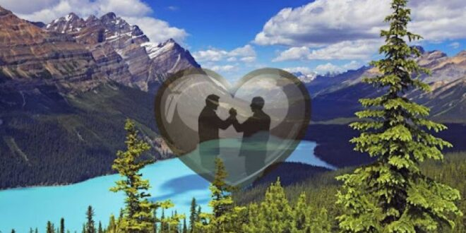 الحب والإخاء أساس البناء